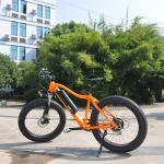 LOHAS/OEM green powerful beach cruiser fat tire electric/electronic bike